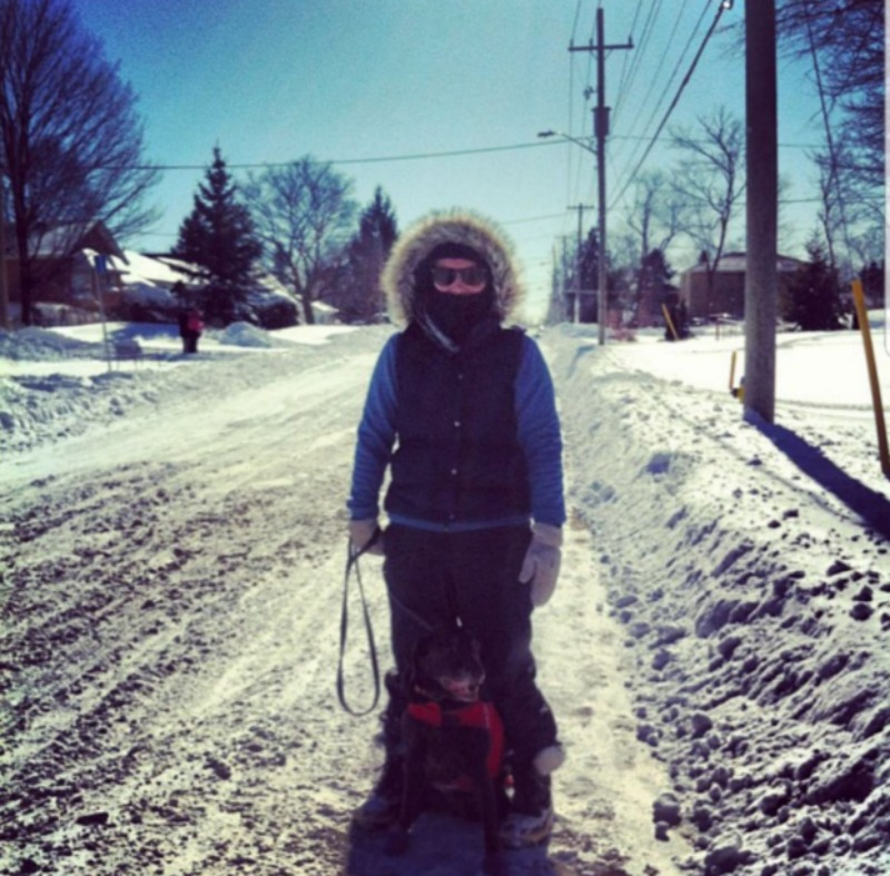 Person bundled up in winter clothing and walking a dog in the snow