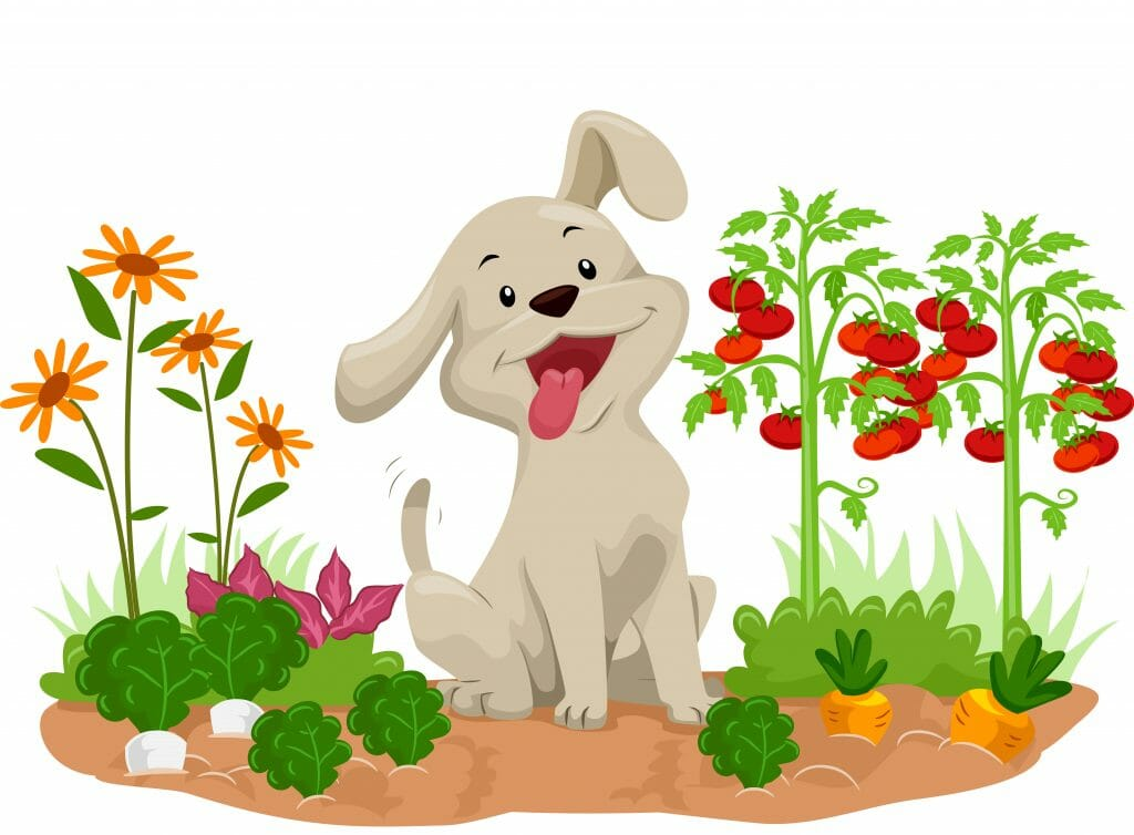Cartoon dog sitting in a vegetable garden